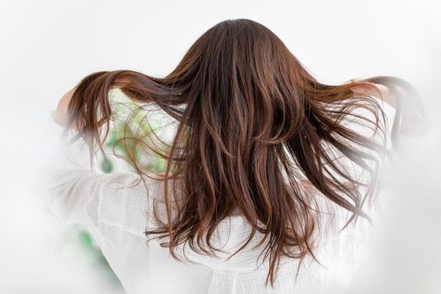 髪には、その人の「心」「考え方」「行動」が表れる